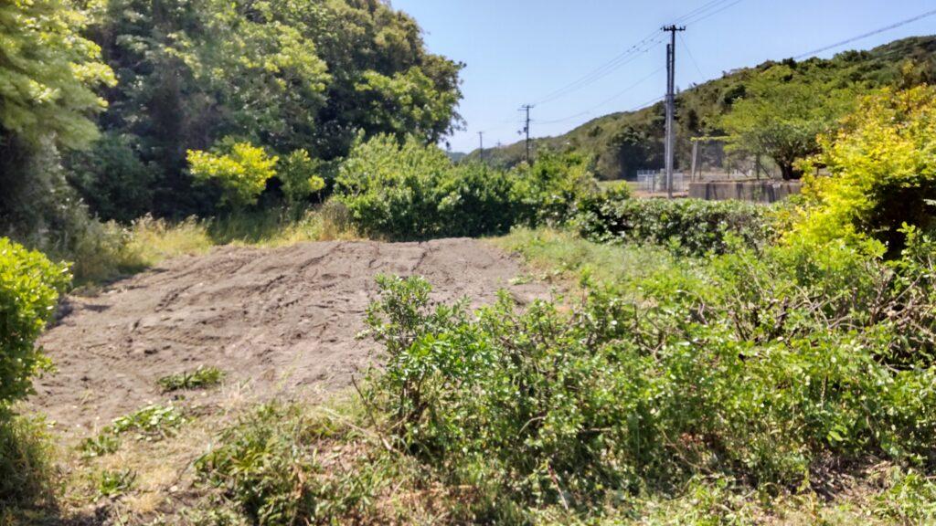 バナナを植える畑