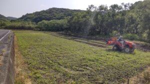 ひまわり畑の整備